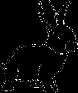 rabbit-161467_1280